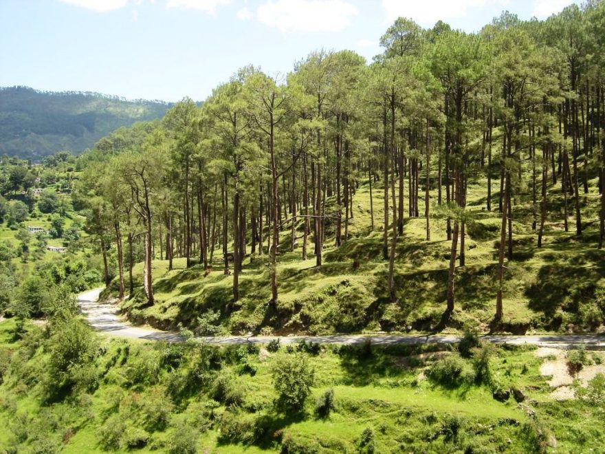 best time to visit kausani