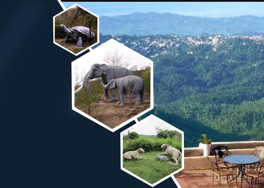 Suketi Fossil Park - Sirmour-Retreat-Himachal